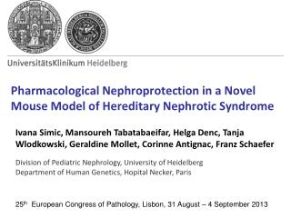 Pharmacological Nephroprotection in a Novel Mouse Model of Hereditary Nephrotic Syndrome