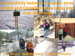 Connectivity between Eurasian snow extent and Canadian snow mass and river discharge