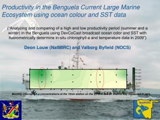 Productivity in the Benguela Current Large Marine Ecosystem using ocean colour and SST data