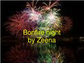 Bonfire night by Zeena