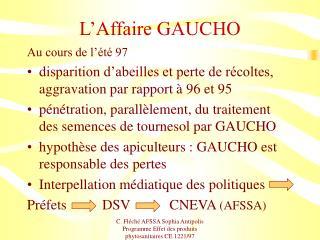 L'Affaire GAUCHO