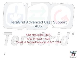 TeraGrid Advanced User Support (AUS)