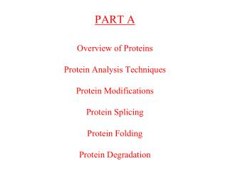 OVERVIEW OF PROTEINS