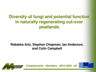 Diversit y of fungi and potential function   in naturally regenerating cut-over peatlands