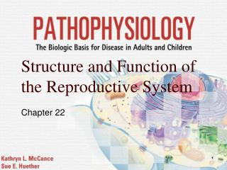 Structure and Function of the Reproductive System