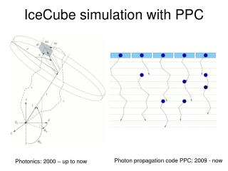 IceCube simulation with PPC