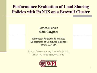 Performance Evaluation of Load Sharing Policies with PANTS on a Beowulf Cluster