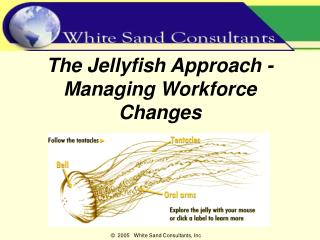 The Jellyfish Approach -  Managing Workforce Changes