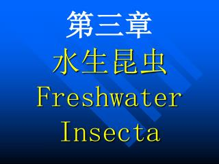 ??? ????  Freshwater Insecta