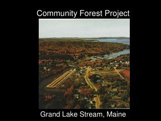 Community Forest Project