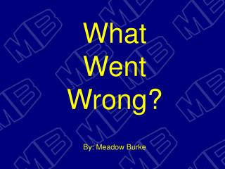 What Went Wrong? By: Meadow Burke