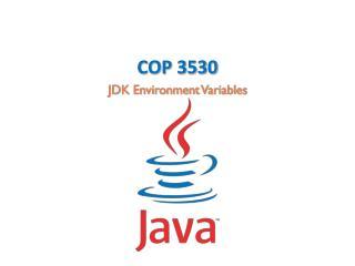 COP 3530