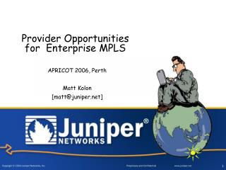 Provider Opportunities for  Enterprise MPLS
