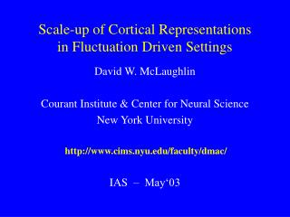 Scale-up of Cortical Representations in Fluctuation Driven Settings