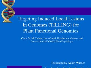 Targeting Induced Local Lesions In Genomes (TILLING) for Plant Functional Genomics