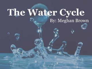The Water Cycle By: Meghan Brown