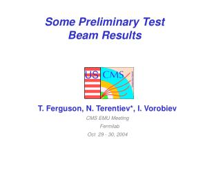 Some Preliminary Test Beam Results