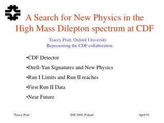 A Search for New Physics in the  High Mass Dilepton spectrum at CDF