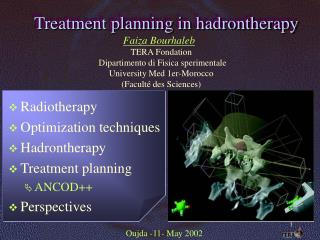 Treatment planning in hadrontherapy