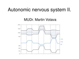 Autonomic nervous system  II.