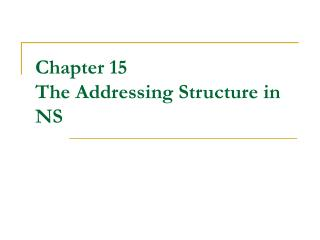 Chapter 15 The Addressing Structure in NS