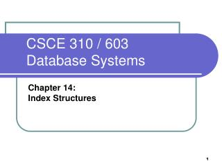 CSCE 310 / 603  Database Systems