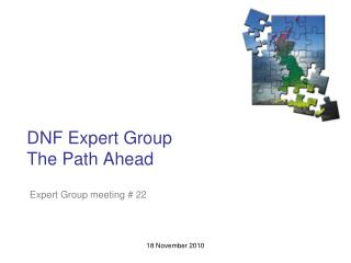 DNF Expert Group The Path Ahead
