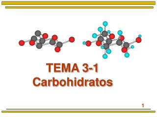 TEMA 3-1 Carbohidratos