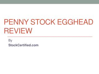 Penny Stock Egghead Review