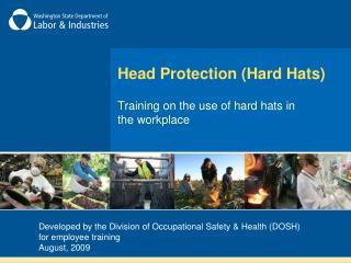 Head Protection (Hard Hats)