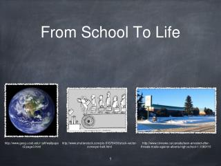 From School To Life