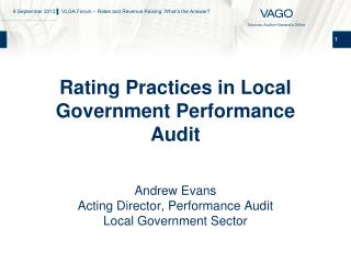 Rating Practices in Local Government Performance Audit