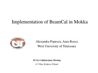 Implementation of BeamCal in Mokka