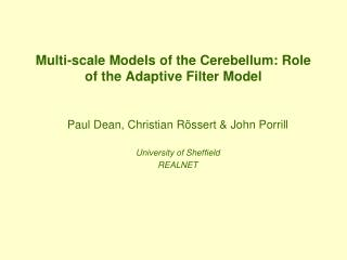 Multi-scale Models of the Cerebellum: Role of the Adaptive Filter Model