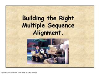 Building the Right Multiple Sequence Alignment.
