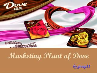 Marketing Plant of Dove by group11