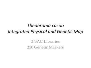 Theobroma cacao Integrated Physical and Genetic Map