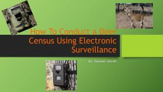 How To Conduct a Deer Census Using Electronic Surveillance