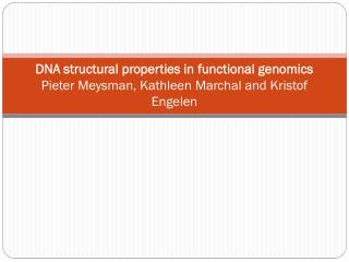 Structural properties, scales and profiles