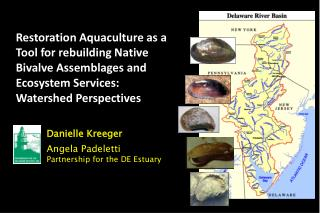 Danielle Kreeger Angela Padeletti Partnership for the DE Estuary