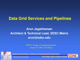 Data Grid Services and Pipelines