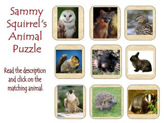Sammy Squirrel's Animal  Puzzle