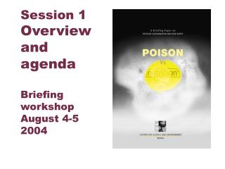 Session 1 Overview and agenda  Briefing workshop August 4-5 2004