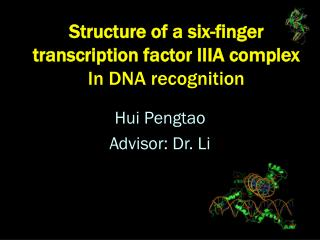 Structure of a six-finger transcription factor IIIA complex  In DNA recognition