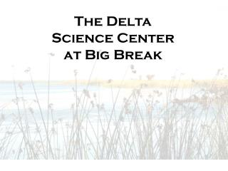 The Delta Science Center at Big Break
