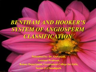 BENTHAM AND HOOKER'S SYSTEM OF ANGIOSPERM CLASSIFICATION