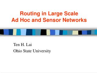 Routing in Large Scale  Ad Hoc and Sensor Networks