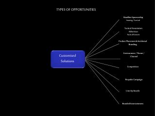 TYPES OF OPPORTUNITIES