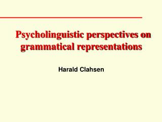 Psycholinguistic perspectives on grammatical representations