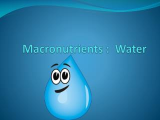 Macronutrients :  Water